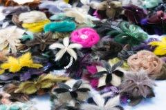 Vari dei perni femminili sotto forma di pelliccia fioriscono Immagine Stock Libera da Diritti
