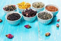 Vari erbe e tè medicinali secchi in parecchie ciotole su fondo di legno blu Fotografia Stock Libera da Diritti