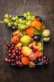 Vari frutti più sharvest freschi in una scatola blu su una struttura di legno scura, vista superiore fotografia stock
