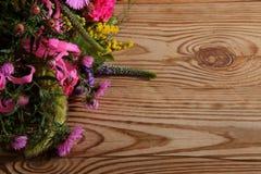Vari generi di fiori in molti colori Immagini Stock Libere da Diritti