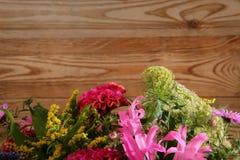 Vari generi di fiori in molti colori Fotografia Stock