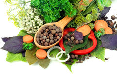 Vari generi di spezie su priorità bassa bianca Immagine Stock