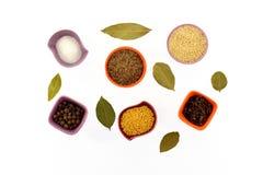 Vari generi di spezie in tazze minuscole Fotografie Stock
