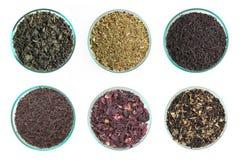 Vari generi di tè Fotografie Stock