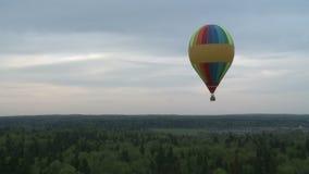 Vari hanno colorato i palloni che aumentano sopra le cime dell'albero archivi video