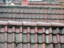Vari hanno piastrellato i tetti nella tele-prospettiva fotografia stock libera da diritti