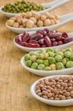 Vari legumi sui cucchiai della porcellana Fotografia Stock