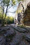 Vari rami di albero veduti sepolti dentro una priorità alta rocciosa accanto ad una formazione rocciosa alta Fotografie Stock Libere da Diritti