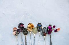Vari sapori di tè Karkade di matcha del tè del fiore del tè verde nella s Fotografie Stock Libere da Diritti