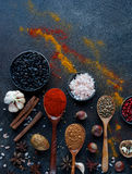 Vari spezie, dadi ed erbe indiani in cucchiai e ciotole di legno del metallo Fotografia Stock
