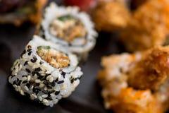 Vari sushi gentili del rotolo Fotografie Stock Libere da Diritti