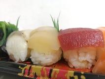 Vari sushi sul piatto bianco del fondo Immagine Stock Libera da Diritti