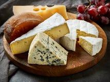 Vari tipi di formaggi immagine stock