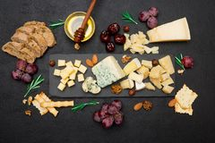 Vari tipi di formaggi - brie, camembert, roquefort e cheddar su calcestruzzo Fotografia Stock Libera da Diritti
