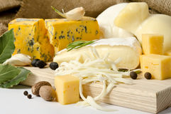 Vari tipi di formaggi con la spezia Fotografia Stock Libera da Diritti