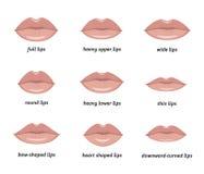Vari tipi di labbra della donna Fotografia Stock Libera da Diritti