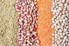Vari tipi di legumi Fotografia Stock