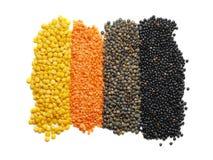 Vari tipi di lenticchie Fotografia Stock