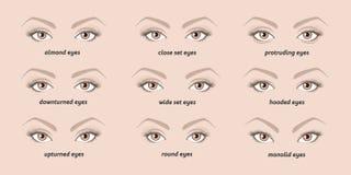 Vari tipi di occhi della donna Fotografia Stock Libera da Diritti