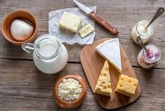 Vari tipi di prodotti lattier-caseario Immagine Stock