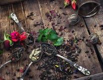 Vari tipi di tè Fotografia Stock