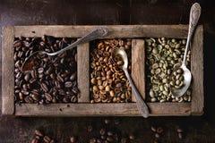 Variação de feijões de café fotografia de stock royalty free