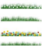 Variações da grama da mola Imagem de Stock Royalty Free