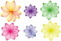 Variações florais ilustração royalty free
