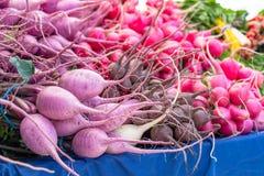 Variações frescas do rabanete em um mercado local dos fazendeiros colorido fotos de stock
