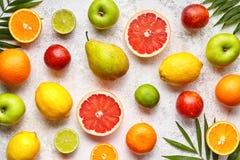 Varia disposizione del piano della miscela del fondo degli agrumi, alimento biologico vegetariano sano immagini stock