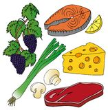 Varia raccolta dell'alimento Illustrazione di Stock