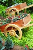 Varia verdura in giardino Immagine Stock