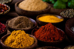 Variability of Asian spices on wooden table Stock Image
