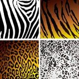 Variación de la piel animal Fotografía de archivo