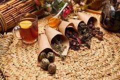 Variaciones del condimento para el té Imagen de archivo libre de regalías