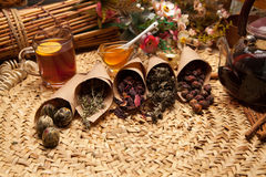Variaciones del condimento para el té Imágenes de archivo libres de regalías