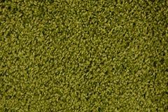 Varianten van kleurenoplossingen voor tapijtstof Stock Afbeeldingen