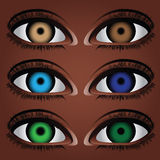 Variants human eye. Variants of the human eye to different colors of the pupil. Vector illustration Royalty Free Stock Image