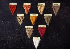Varias clases de especias Imagenes de archivo