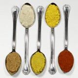 Varias clases de especias y de colorante alimentario Formato cuadrado de la imagen Fotografía de archivo