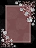 Varias flores Imagen de archivo libre de regalías