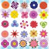 Varias flores ilustración del vector