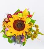 Varias flores del verano Foto de archivo libre de regalías