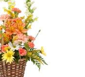 Varias flores dispuestas en un fondo blanco Imágenes de archivo libres de regalías