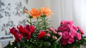 Varias flores en conserva están en la tabla en el cuarto metrajes