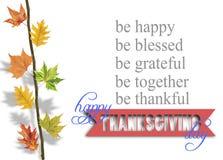 Varias hojas que cuelgan en rama de árbol y acción de gracias Imagen de archivo libre de regalías