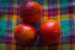 Varias naranjas rojas frescas se han escogido de un árbol y acaban de llenarse en una tela a cuadros de diversos colores brillant fotos de archivo libres de regalías