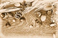 Varias tuercas Fotografía de archivo libre de regalías