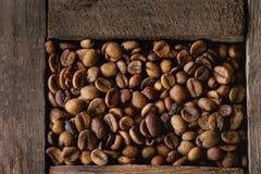 Variatie van koffiebonen royalty-vrije stock fotografie