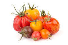 Variatie van sappige Tomaten Royalty-vrije Stock Foto